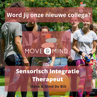 Vacature Sensorisch Integratie Therapeut De Bilt Move & Mind
